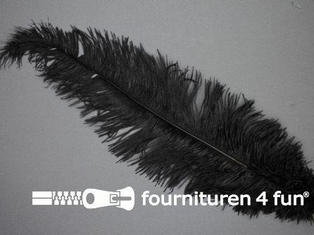 Struisvogelveer 250mm - 300mm zwart