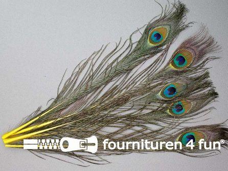 Pauwenveren 25cm gekleurd 5 stuks geel