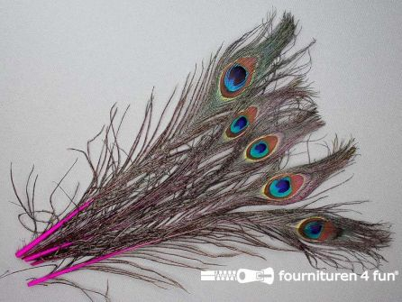 Pauwenveren 25cm gekleurd 5 stuks fuchsia roze