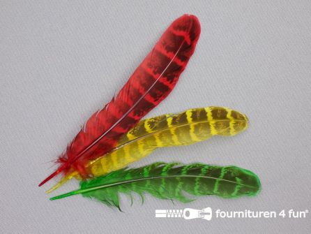 Fazant veren 14cm gekleurd 3 stuks - rood geel groen